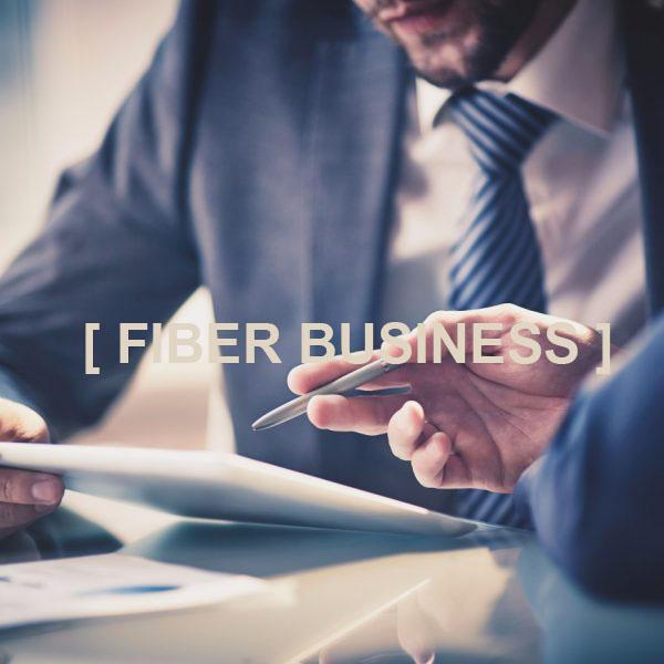 internet-fpt-fiber-business